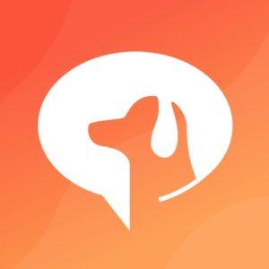【SocialDog】フォロワーを増やすTwitterツールを紹介!