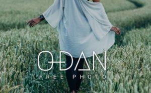 【O-DANの使い方】38サイトまとめた最強フリー素材サイトを解説