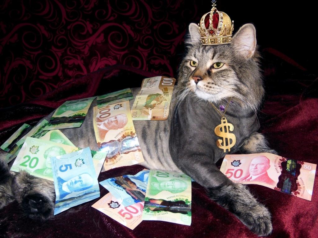 ブログを書くメリット②収入が得られる
